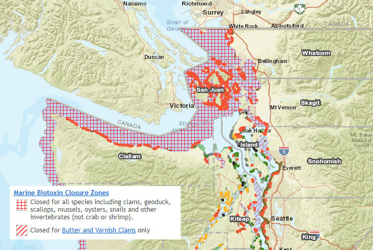 Warnings issued about recreational sfish harvesting in ... on seattle map, lopez island map, camano island map, caribbean islands map, bainbridge island map, oak harbor, orcas island map, strait of juan de fuca map, spieden island, whidbey island map, sucia island map, puget sound map, lopez island, point roberts, san juan county, barnes island, washington islands map, shaw island, canoe island, whidbey island, olympic peninsula map, strait of juan de fuca, blakely island, satellite island, hawaii islands map, vashon island map, bermuda islands map, lummi island map, roche harbor, friday harbor map, camano island, fidalgo island map, allan island, vancouver island map, friday harbor, battleship island, gulf islands, patos island map,