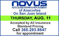 Novus - Windshield Repair