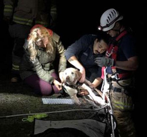 San Juan Island firefighters rescue Cowboy - VIDEO