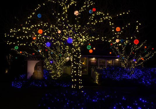 holiday-lights-2816.jpg