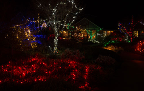 holiday-lights-2844.jpg