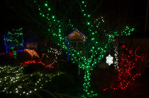holiday-lights-2883.jpg