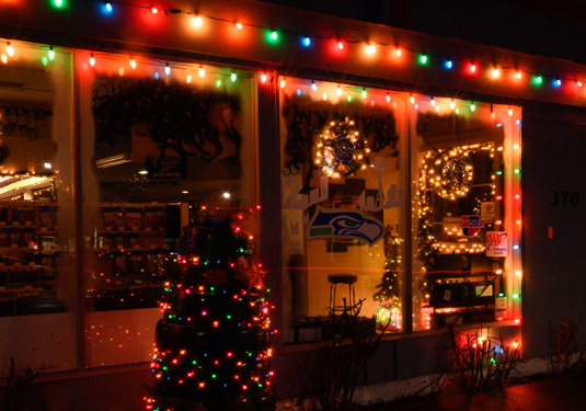 holiday-lights-3825.jpg
