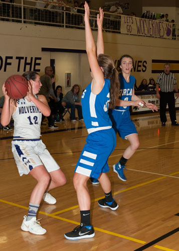 girls-basketball-4127.jpg
