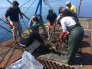 July 25: Thank You Party in Friday Harbor for U.S. Army Deepwater Derelict Net Removal Project
