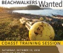 Oct. 13: Beachwatchers wanted for coastal observation and  seabird survey team
