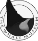 March 6: The Whale Museum's Education Department Volunteer Open Houses in Friday Harbor