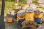 July 28: Movies in the Park: Minions